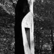 arbre-yr1