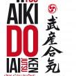 affiche-aikido-yr1