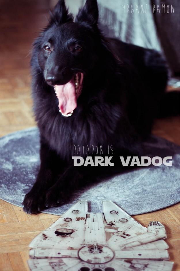 darkvadog4